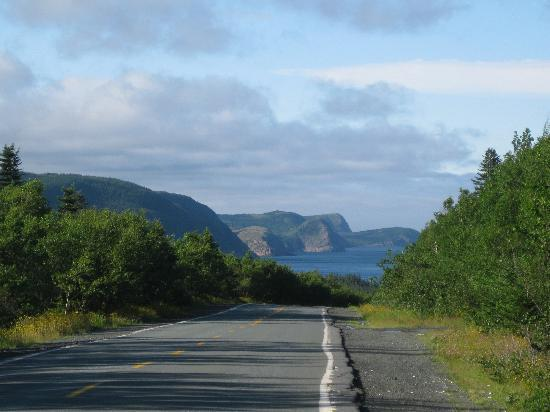 Cape Spear Lighthouse: along road to Cape Spear