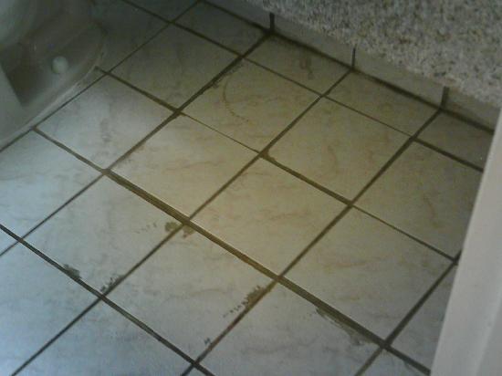 Howard Johnson Inn - Newburgh: Horrible bathroom floors