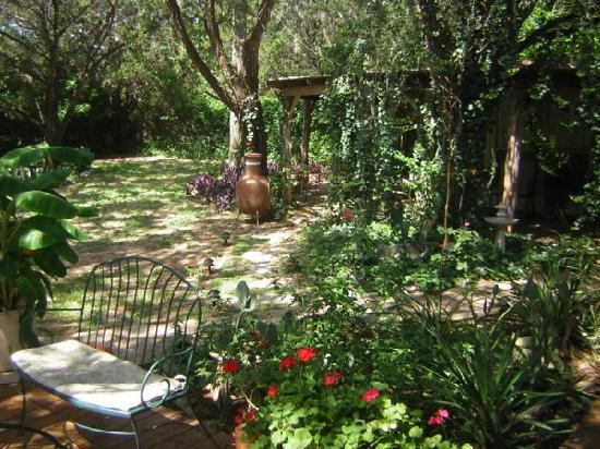 Casa del Sol Bed and Breakfast at Lake Travis: Garden @ Casa del Sol