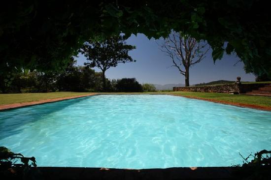 Kings Walden Garden Manor: pool