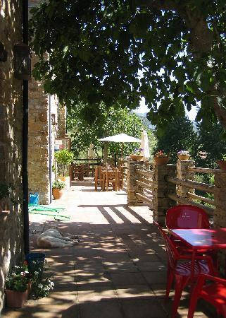 Hotel Cueva del Gato: Cueva del Gato B&B