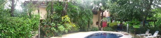 Nosara Surf Villas: Un panorama des Villa 1 et 2 autour de la piscine centrale