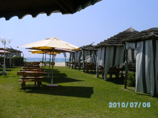 Hotel Laico Hammamet: bar et pte restauration plage