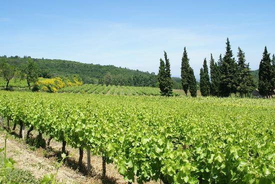 Nimes, France: Vallée du Rhône - Gard - Languedoc Roussillon - Sud de France