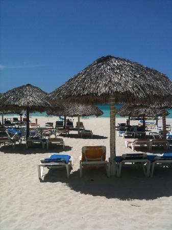 Hotel Los Delfines: spiaggia
