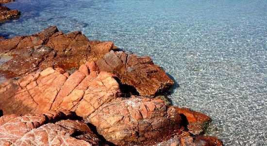 Plage de Palombaggia: plage de la Palombaggia