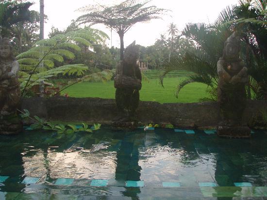 Cempaka Belimbing Villas: Zona de la piscina