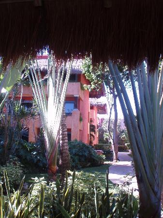Iberostar Tucan Hotel: Vue de l'hôtel