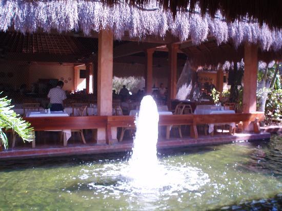 Iberostar Tucan Hotel: Un des jets d'eau avec bassin de carpes Koïs