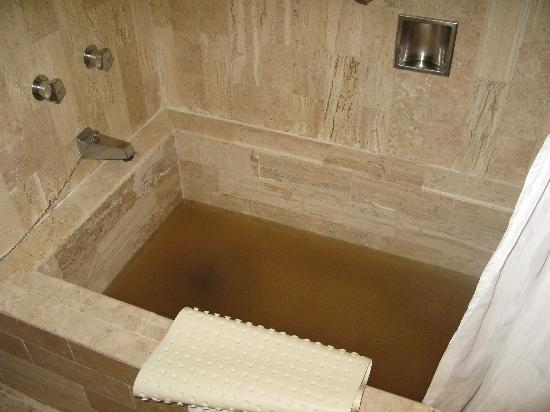 Villa del Palmar Beach Resort & Spa: Tub in our bedroom - before the toilets overflowed...