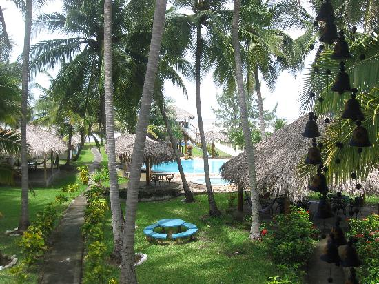 Azul Surf Club: view on the garden