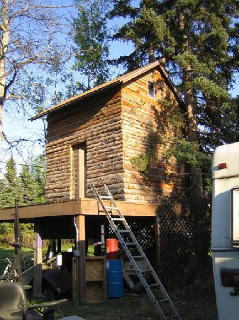 Fairbanks International Hostel: Treehouse