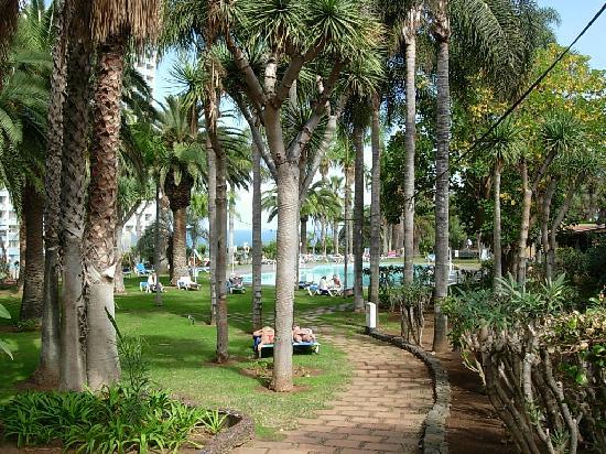 Maritim Hotel Tenerife: Pool