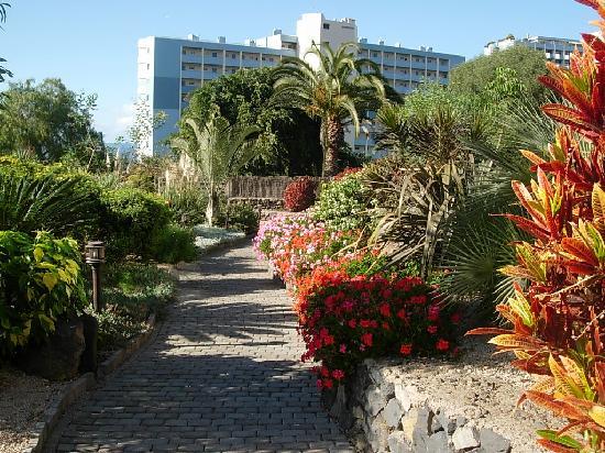 Maritim Hotel Tenerife: Garten