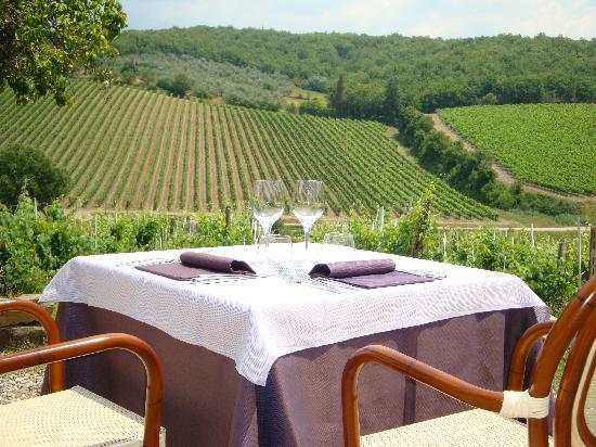 Ristorante Podere Le Vigne : our awesome table!!