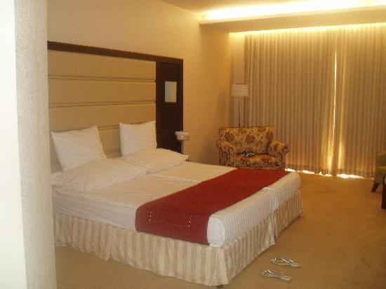 Pirin Park Hotel: My room