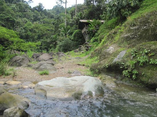 Rios Tropicales lodge.