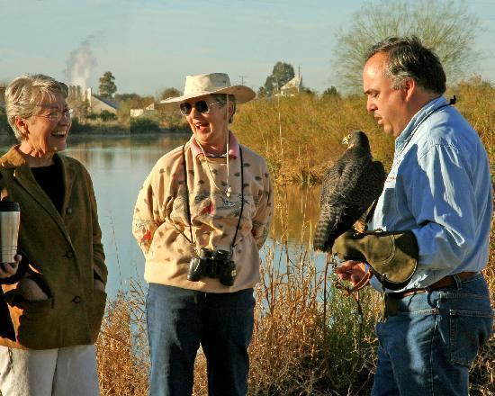 Chandler, AZ: Veteran's Oasis Park