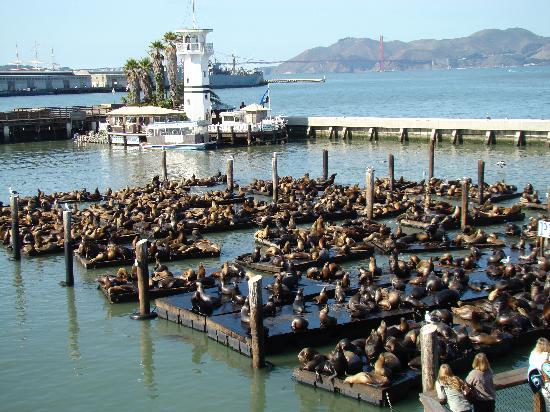 Harbour Hotel San Francisco