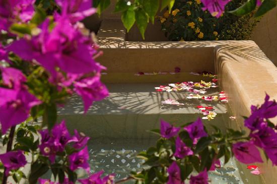 Riad Cinnamon : Roof terrace