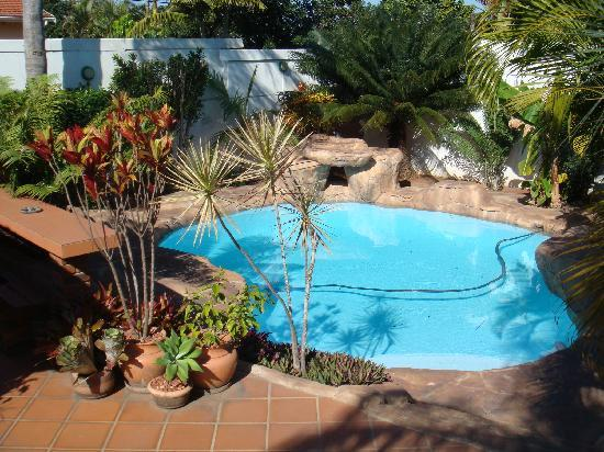 Africa Regent Guest House: the pool