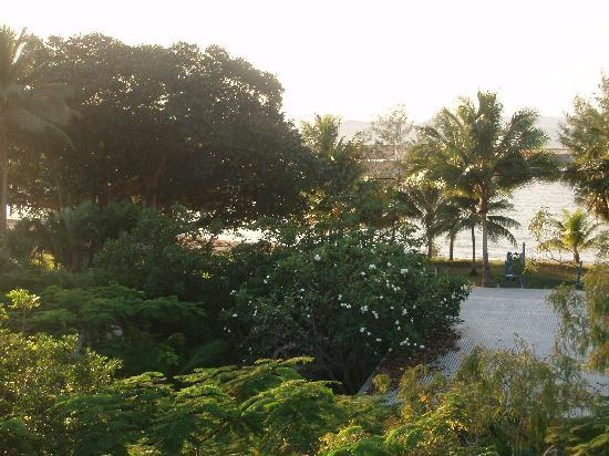 Island Palms Resort: View from deck