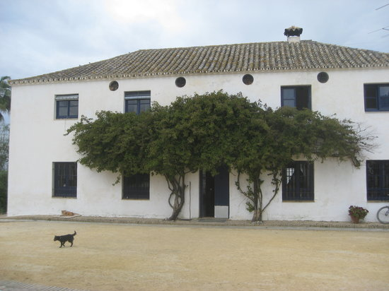El Bosque, إسبانيا: Hacienda Buena Suerte