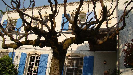 Fontvieille, Frankrig: Auberge Les Balastres