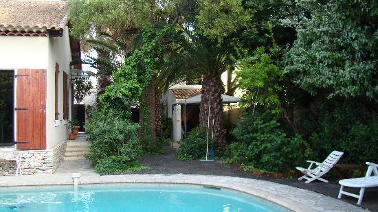 La Palmeraie : palmeraie et piscine