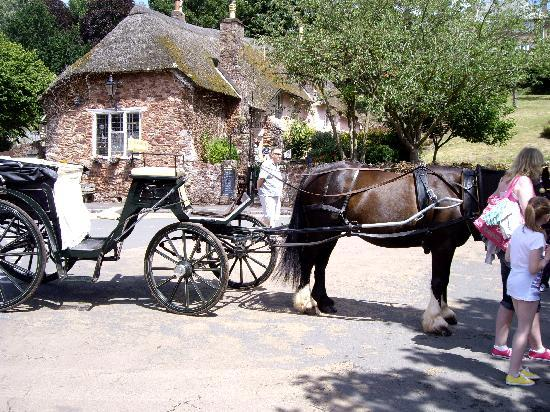 Colin House: Cockington horse drawn cart