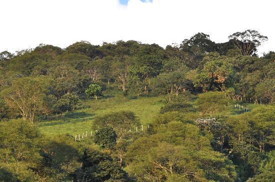 Sapucai-Mirim: nature