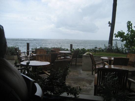 La Playita Restaurant & Bar: View from the patio