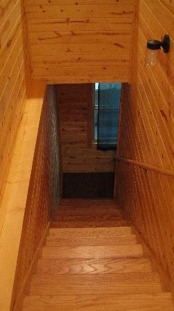 Sautee Mountain Retreat : Stairs to pool room and lower level