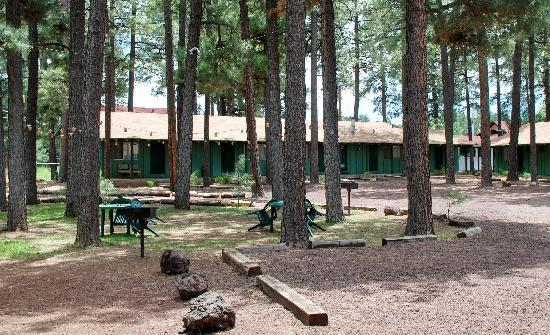 Pinetop-Lakeside, Аризона: Rear courtyard....A great place to relax