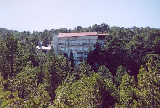 Health Habitat and Slimming Resort: Surrounded by Pine Trees
