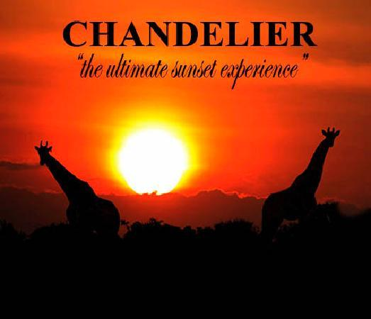 Chandelier Game Lodge & Ostrich Show Farm: Ultimate Sunset Experience