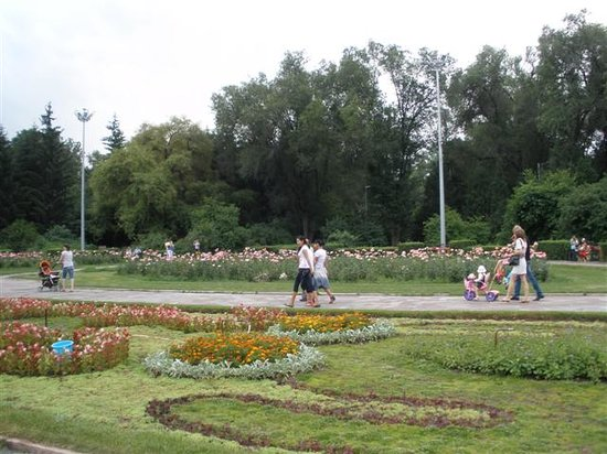 Almaty Central Park: Park