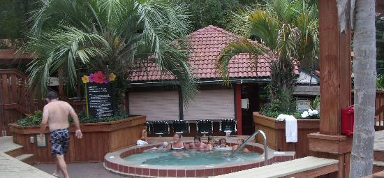 Allure Resort International Drive Orlando: hot tub and pool bar