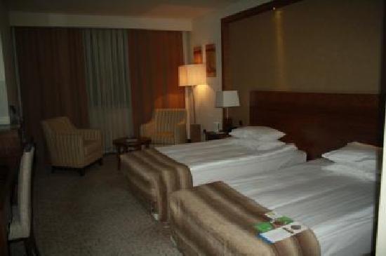 Dedeman Konya Hotel & Convention Center: ツイン