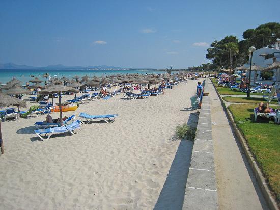 Grupotel Los Principes & Spa: Muro beach