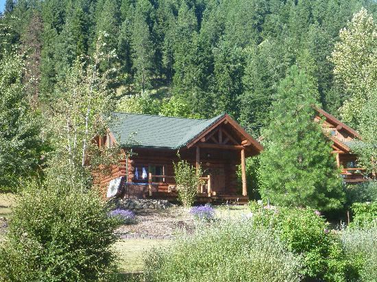 River Dance Lodge: Cozy Cabin
