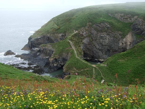 Cwm Connell Coastal Cottages: Local coast path