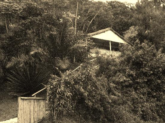 Buhoma Lodge: My cabin