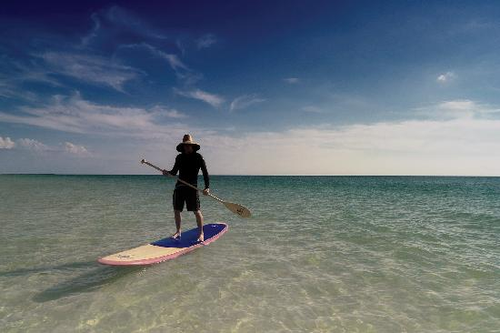 Paddleboarding Picture Of Anna Maria Island Florida