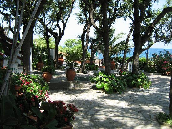 Hotel Villa Ombrosa: il giardino