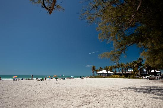 Lakewood Ranch, FL: 20 min to Gulf Beaches