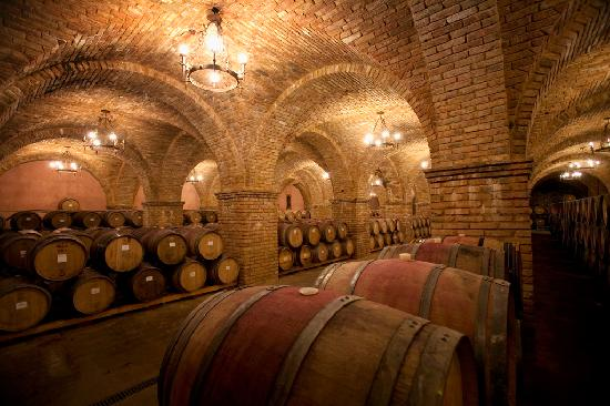 Castello di Amorosa: The Grand Barrel Room
