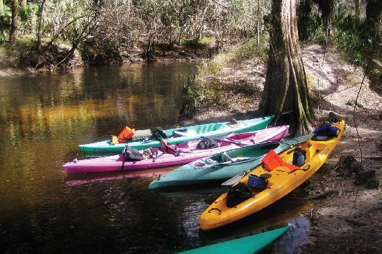 Palmetto, FL: Kayak our preserves