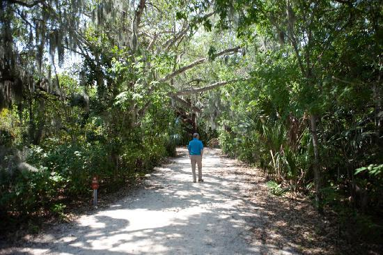 Palmetto, FL: Trails at Emerson Point