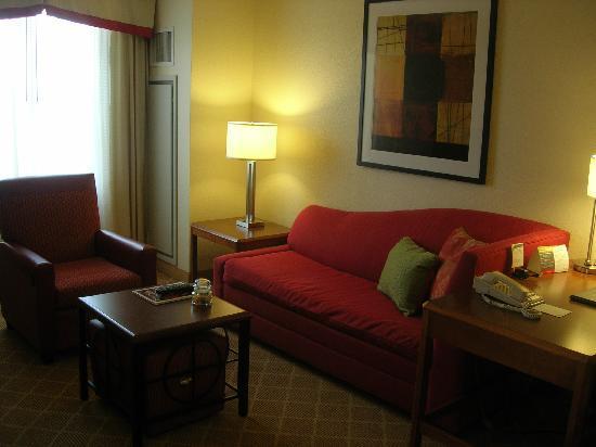 Residence Inn Alexandria Old Town/Duke Street: Living Room.